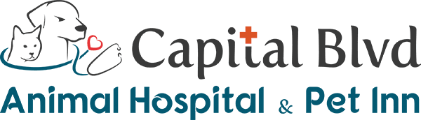 Capital Blvd Animal Hospital and Pet Inn
